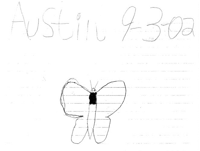 Austin's butterfly first draft